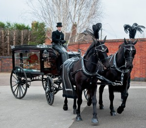 Tamworth Co-op's funeral division is receiving a record number of requests for horse-drawn carriages.